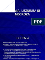 ISCHEMIA__LEZIUNEA___I_NECROZA-POWERPOINT