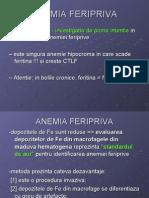 L.P._Anemii_2