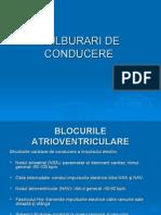 TULBURARI_DE_CONDUCERE_1