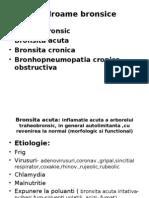 Bronhopneumopatia Cronica Obstructiva -Curs