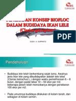 Penerapan Konsep Biofloc Dalam Budidaya Ikan Lele Tukijo