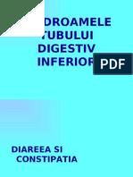 17sindroamele Tubului Digestiv Inferior