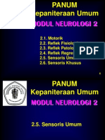 @02 Modul 2 Neuro 03 Sensoris