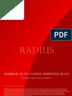 001 Businessplan-rubberplantation Final