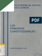 Hernandez Valle Ruben - Los Principios Constitucionales