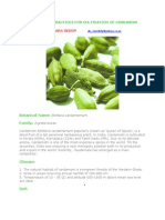 Profitable Practices for Cultivation of Cardamom