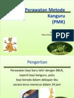 pmk ppt