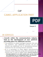 This presentation gives basic information on CAP