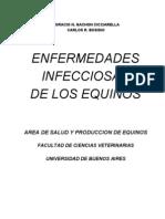 Enfermedades Infecciosas de Los Equinos