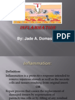 INFLAMMATION Report Final 2003 Ed