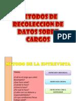Metodos de Recoleccion de Datos Sobre Cargos