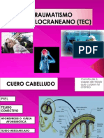 expo TEC