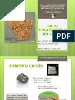 CICLO BIOGEOQUÍMICO DEL CALCIO