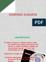 DOMINIO EUKARYi