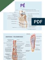 Pé Figuras Anatomia e Cinesioterapia