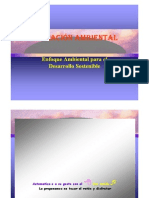 Ponencia Ambiental 2011