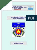 BGOn004-07Jan10.pdf