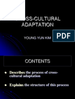 CROSS-CULTURAL ADAPTATION.ppt