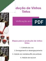 Tecnologia de Bebidas-Vinho Tinto