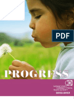 2013 SCCMHA Progress Report