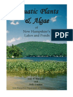 aquatic plants  algae of new hampshires lakes  ponds by a  smagula  j  connor