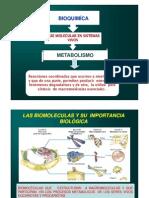 AMINOACIDOS_QUI343