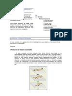 Normas de Higiene Postural y Ergonomia