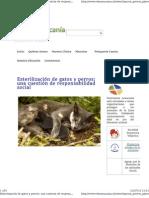 Esterilizacion en Perros y G gatos