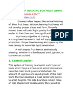 Systems of Training for Fruit Crops