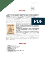 Qhellqa - Nociones de Gramatica Quechua