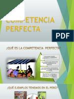Competencia Perfecta- Grupo 1