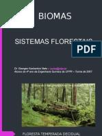 BIOMA - FLORESTAS