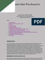 (eBook) Peyote and Other Psychoactive Cacti