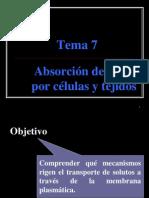 Tema 7-Absorcion y Transporte de Iones