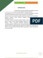 INSTRUMENTOS DE LA GESTIÓN AMBIENTAL (1)