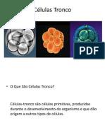 Celulas Tronco 1