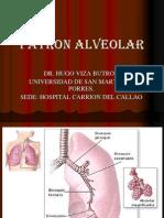 06. Patron Alveolar