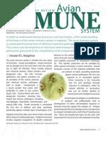 Avian Immune System - 1