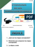 EXPOSICIÓN MAPA CONCEPTUAL - Luizito