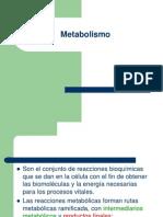 Metabolism o