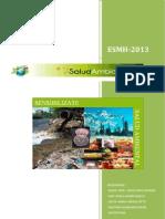 Salud Ambiental 2013