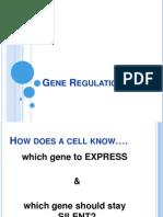PP Gene Regulation