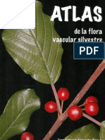 Atlas Flora Burgos