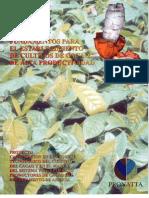 2006718101731_Cultivo Cacao Alta Productividad