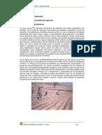 estruc-prod-agricola1 MAIZ.pdf