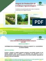 Sistemas Integrales Proyecto Lechero