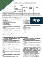 EVALUACIÓN  DIAGNÓSTICA  HISTORIA GEOGRAFIA Y CIENCIAS SOCIALES 7º AÑO 2012.docx