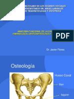 Anatomia de Cadera- Javier Flores
