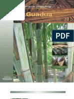 Cadena de La Guadua