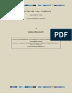 ac21-sistemaNP